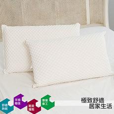 【eyah宜雅】台灣製輕柔絲絨枕2入組