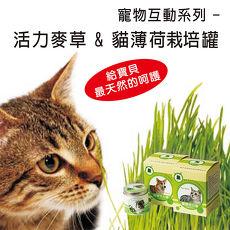 《APP》【Light+Bio】寵物天然野菜園二入組合(活力麥草+貓薄荷栽培罐)