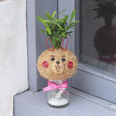《童趣植栽》【Light+Bio】造型苔球同樂會-卡娜赫拉