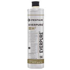 Everpure愛惠浦家用抑垢型濾心BH2