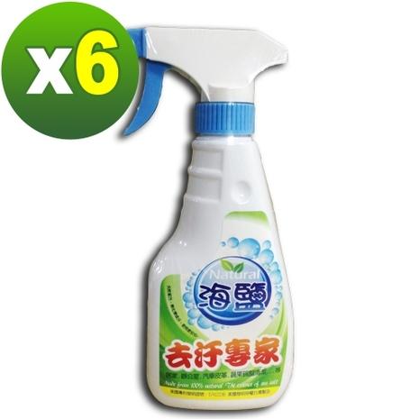 【環寶靈】海鹽去污專家300ml(6瓶/組)