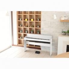 【KORG】LP-180 標準88鍵數位鋼琴 / 含多項贈品 / 時尚白 公司貨保固