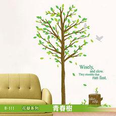 B-111花草系列-青春樹 大尺寸高級創意壁貼 / 牆貼