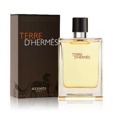 Hermes Terre DHermes 愛馬仕大地男性淡香水 100ml