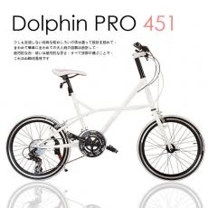 【AiBIKE】 SHIMANO 20吋24速 Dolphin PRO 小徑車 雪白限定版 升級451輪組 七夕情人款 小徑車