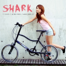 【AiBIKE】SHIMANO 20吋27速 鯊魚小徑車 二代進階款 小徑車